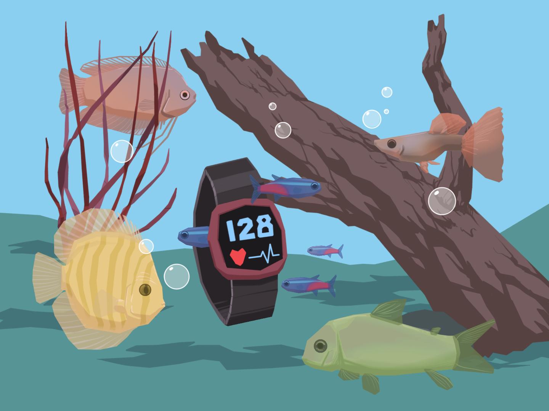 heartfish Herzgesundheit